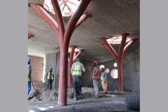 07-Botha's-Halte-Primary-School-Structural-Steel-Tree-Columns-Meyer-Associates